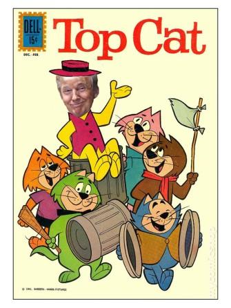 trumptopcat